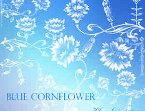 漂亮的矢车菊印花图案、植物花纹底纹PS笔刷下载