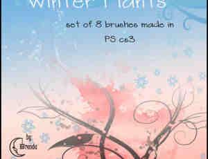 雪花与植物藤蔓枝条花纹艺术图案PS笔刷素材
