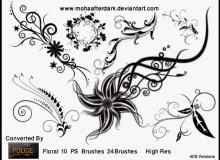 漂亮华丽的艺术花纹图案PS笔刷免费下载