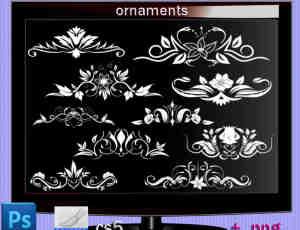 漂亮尊贵的欧美艺术花纹、鲜花印花图案PS笔刷免费下载