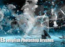 深海水母、海洋浮游生物水母PS图形笔刷