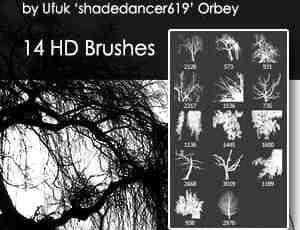 14种大树、树木剪影图形Photoshop笔刷素材下载