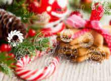 圣诞节花圈、花环装饰品线框图案ps笔刷素材