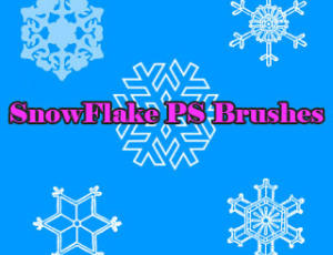 手绘雪花式花纹图案Photoshop笔刷素材下载