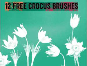 12种免费的水彩造型鲜花图案PS笔刷素材下载