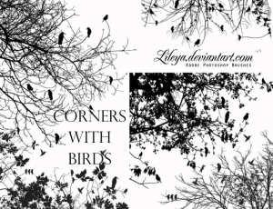 树枝、树叉与小鸟、书上的小鸟剪影图形PS笔刷素材