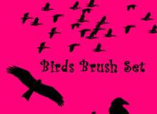 乌鸦、候鸟、大雁南飞剪影图形Photoshop飞鸟笔刷