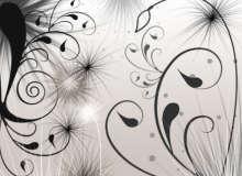 简单的线条式漩涡艺术花纹图案造型PS笔刷素材