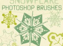 13种漂亮的雪花状花纹图案PS笔刷素材下载
