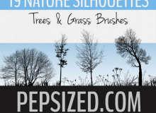 19种树木、大树剪影、草丛、草木轮廓PS笔刷下载
