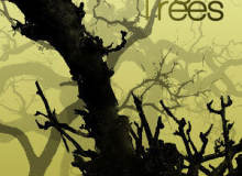 18种高清树木、大叔树干、枯树Photoshop笔刷素材下载
