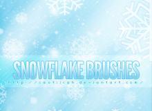 漂亮的雪花图案PS笔刷素材下载