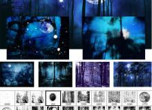 夜晚森林背景PS笔刷素材