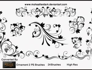 优美的贵族植物花纹图案PS笔刷素材下载