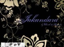 漂亮的贵族艺术花纹PS鲜花花朵印花笔刷