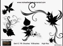 漂亮的艺术系植物叶子花纹图案PS笔刷素材下载