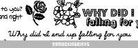 漂亮优雅的鲜花花纹与文字背景装饰PS笔刷素材