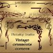 漂亮的手绘植物印花图案花纹PS线条印花笔刷