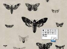 飞蛾、蝴蝶版刻图案效果PS笔刷素材下载