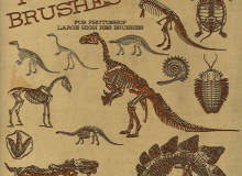 侏罗纪恐龙骨骼化石图案Photoshop笔刷下载