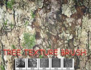 老旧树皮纹理图案PS笔刷素材下载