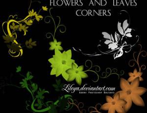 优雅的植物印花图案Photoshop笔刷素材下载