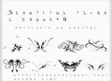 漂亮的优雅艺术线条花纹图案、贵族式线条印花图案PS笔刷素材下载