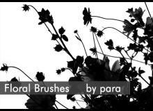 漂亮的植物花朵剪影图形PS笔刷素材下载