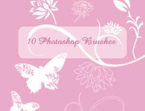 优美的蝴蝶与绽放的鲜花花朵图案PS笔刷素材下载