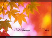 秋天的红叶祭效果、红叶、树叶PS叶子笔刷素材