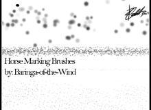 斑点、斑纹效果、马条纹图案Photoshop笔刷素材