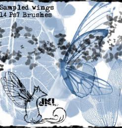 ps蝴蝶翅膀笔刷_翅膀笔刷 : PS笔刷吧-笔刷免费下载