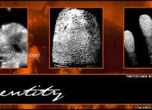 人体指纹、指模、手印、掌印PS笔刷素材下载