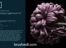 Adobe Lightroom:被你忽略掉的专业照片管理软件,非摄影爱好者不推荐安装!