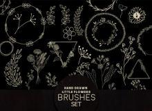 手绘小清新植物花纹图案Photoshop笔刷素材下载