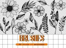 手绘精美鲜花花朵图案、植物印花PS花纹笔刷素材