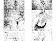 树木、木板纹理图案Photoshop笔刷素材下载