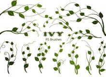 20种常青藤植物绿叶图案PS笔刷素材下载
