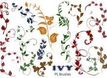 20种植物常青藤花纹图案PS笔刷素材下载