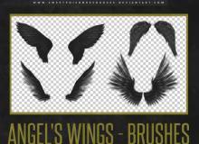 天使羽毛翅膀图案、飞翔的空中羽翼Photoshop笔刷素材下载