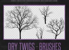枯树、大树剪影图像PS笔刷素材下载