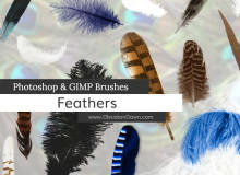 各种鸟毛、羽毛效果图像Photoshop笔刷素材下载