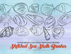 手绘的海螺、贝壳图案Photoshop笔刷素材下载