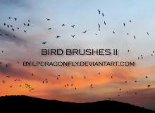 天空飞翔的鸟群剪影图像PS笔刷素材下载