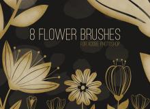 8种高清矢量花纹图案Photoshop笔刷素材下载