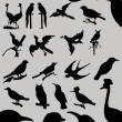 各种飞行鸟类剪影图形Photoshop笔刷素材下载(含photoshop自定义形状素材 .csh文件)