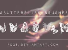6种蝴蝶花纹印记图案PS笔刷下载