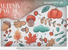 46种秋天的味道卡通图案装扮PS笔刷素材下载(PNG免扣透明格式)