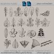 手绘素描式树叶、叶子图形、花叶纹理图案PS笔刷下载