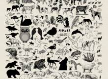 可爱卡通动物百科图案PS笔刷素材下载
